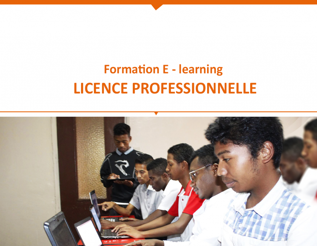 E LEARNING lice professionnelle